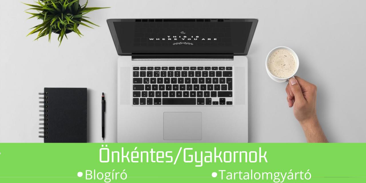 https://hungarianhub.com/wp-content/uploads/2020/09/blogiro_gyakornok-1280x640.png