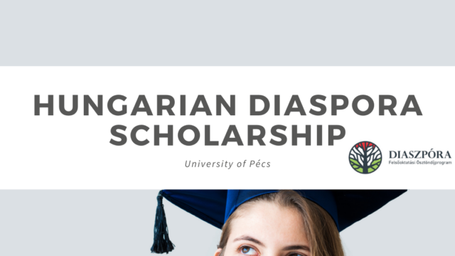 Reboot your roots with the Hungarian Diaspora Scholarship!