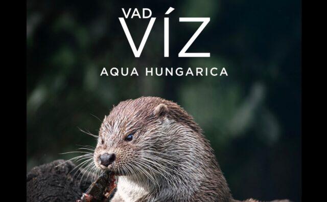Vad víz-Aqua Hungarica