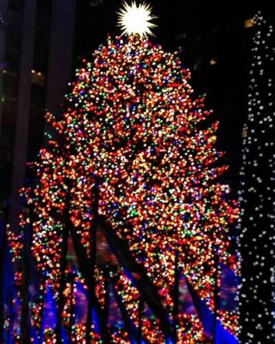 RockefellerCenterXmastree